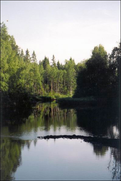 река семча рыбалка отчеты